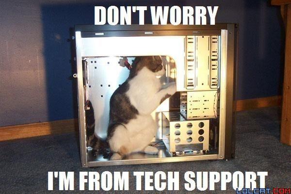 pc-tech-support-cat.jpg
